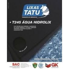 15904 - LIXA D AGUA 500 COM 50 FOLHAS TATU