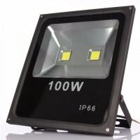 13729 - REFLE.LED100W 6000K GRAU IP65
